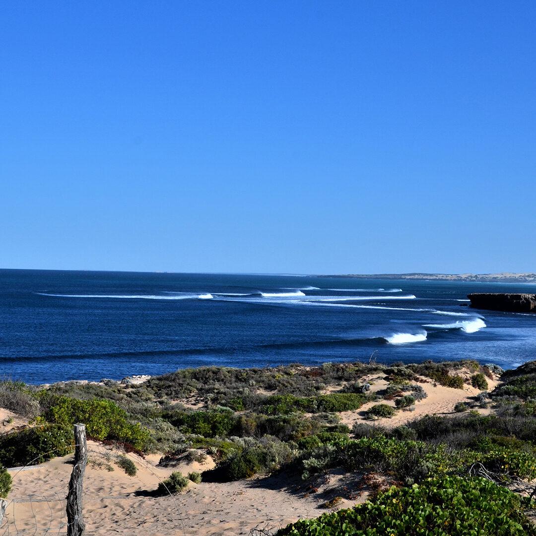Cactus Beach near Penong in South Australia
